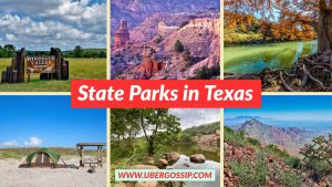 best national parks, best national parks in Texas state, best national parks in USA, Best State Parks in Texas, best state parks in texas with cabins, list of us national parks, map of national parks in Texas, map of us national parks, national parks in eastern us, National Parks in Texas, National Parks in Texas State, national parks map, national parks near Texas, State Parks in Texas, Texas city travel guide, Texas national parks, Texas national parks map, Texas parks, Texas state parks, Texas travel guide, things to do in Texas, things to do in Texas for teens, things to do in Texas in April, things to do in Texas in January, things to do in Texas in September, top national parks in us, uber travel guide